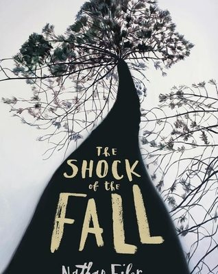 Best Book on Mental Health 2013: The Shock of the Fall – Nathan Filer