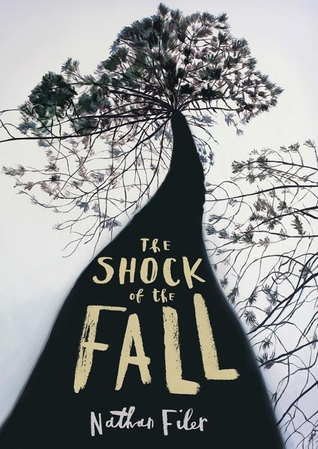 The Shock of the Fall (Where the Moon Isn't) and mental health