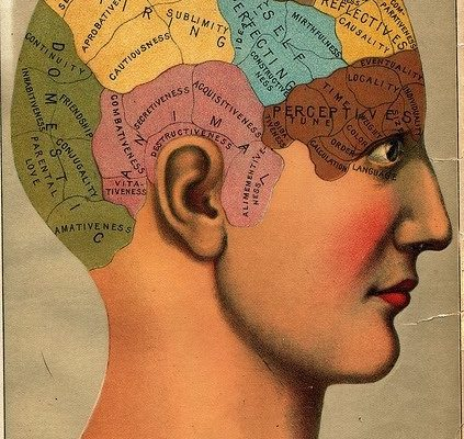 Books Can Heal: Bibliotherapy and The Effect of Reading on the Brain