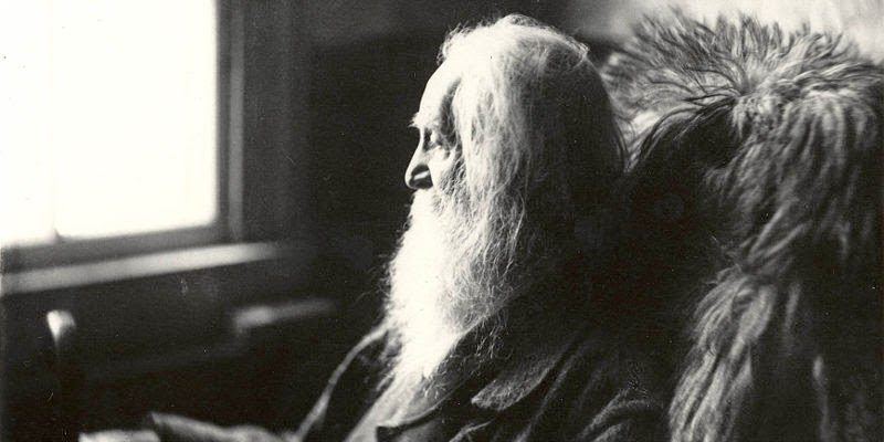 "Navigating a Confusing World with Whitman's ""Of the Terrible Doubt of Appearances"""